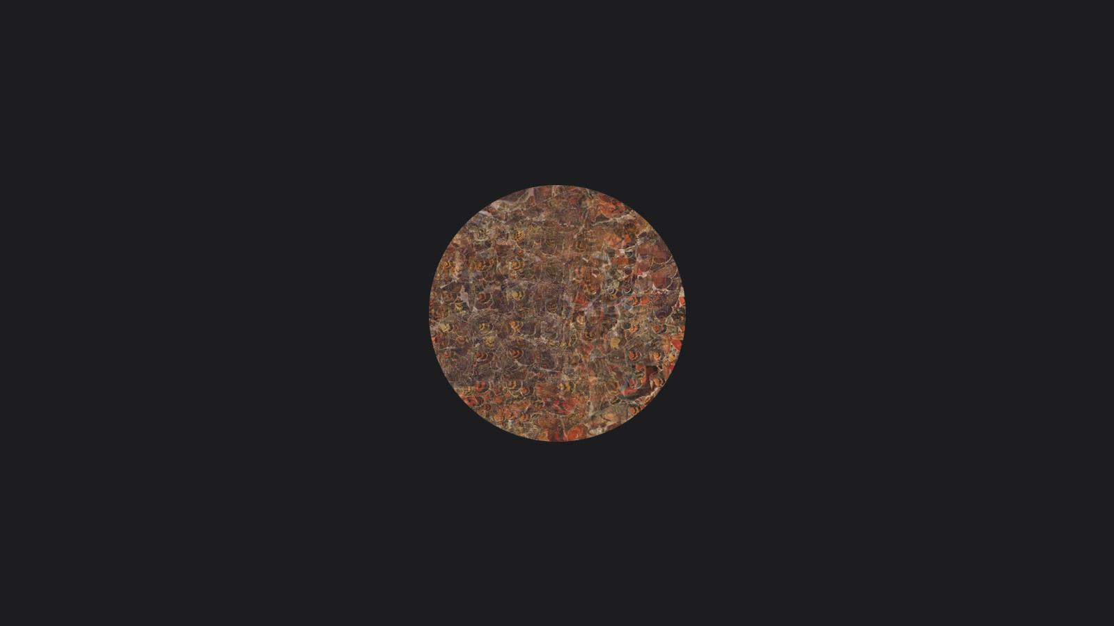 goran despotovski, moth, digital print